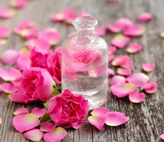 Rosen en magisk blomma….