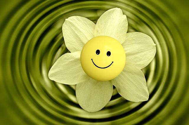 Ta hjälp av vårenergin